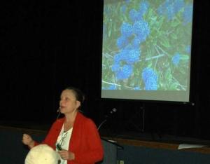 Plumeria Society Talk