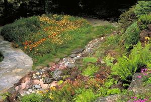 Fleming Garden