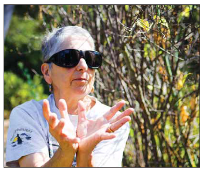 Jan Schachter talking to The Almanac about her native gardening