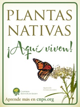 CNPS_9x12_garden_sign_Spanish_qty_25_grande