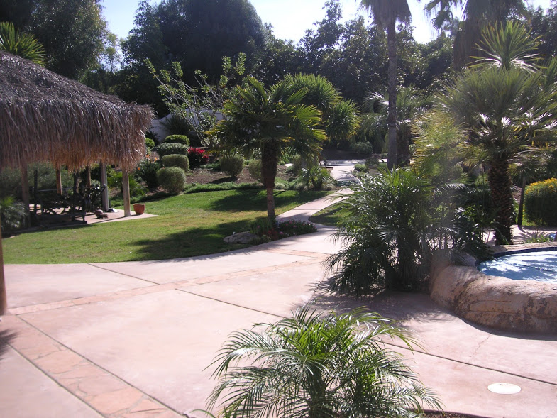 San diego garden tour with calscape creator dennis mudd for Garden pool dennis mcclung