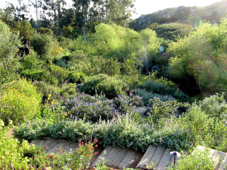 Garden Design California Native Plant Society Blog