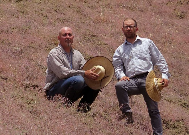 Heath Bartosh and Brian Peterson in a field of buckwheat.